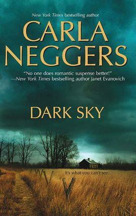 Title details for Dark Sky by Carla Neggers - Available