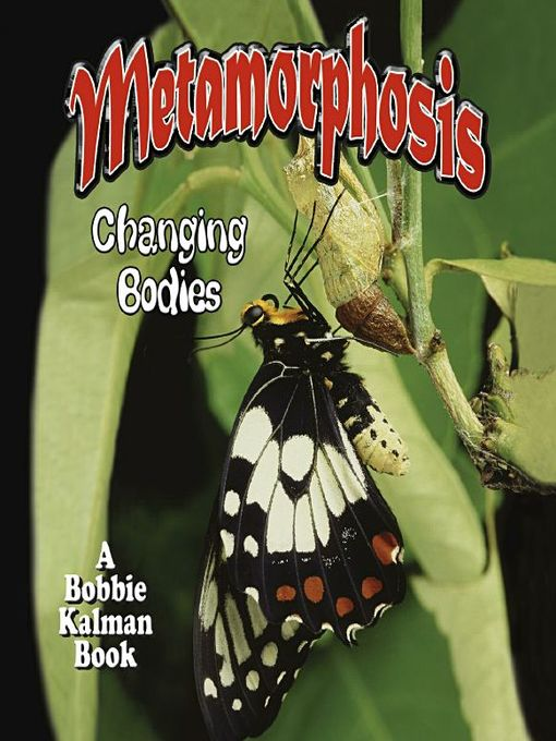 Title details for Metamorphosis by Bobbie Kalman - Wait list